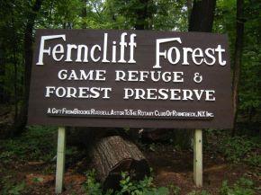 rhinebeck_ferncliff_1