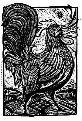 farmers-market-bird